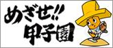 mezase2016_mini_204945